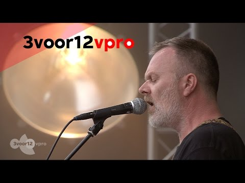 Daryll-Ann - A Proper Line (Live op Into The Great Wide Open 2014)