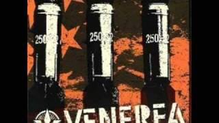 Venerea - Ten Years