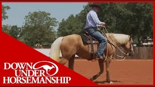 Clinton Anderson: Training a Rescue Horse, Part 10  Downunder Horsemanship