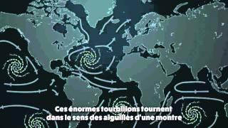 Qu'est-ce qu'un gyre océanique ? thumbnail