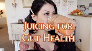 Gut Health Juicing Recipe| Fiber & Protein| Taste the health!