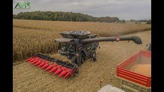 X2 IDEAL FENDT 7PL & 8T à la moisson de maïs en FRANCE !!