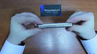 Польский Неодимовый магнит 15*5 Видео-обзор Poland-magnit.com