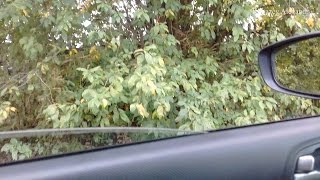 Как открыть и закрыть стекло в машине стеклоподъемником на кнопке?