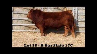 Lot 18 B Bar Slate 17C