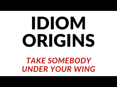 Idiom Origins | Take Somebody Under Your Wing