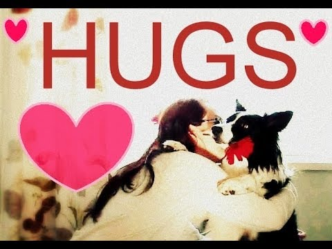 Teach Your Dog to HUG You! Easy trick to teach dogs.