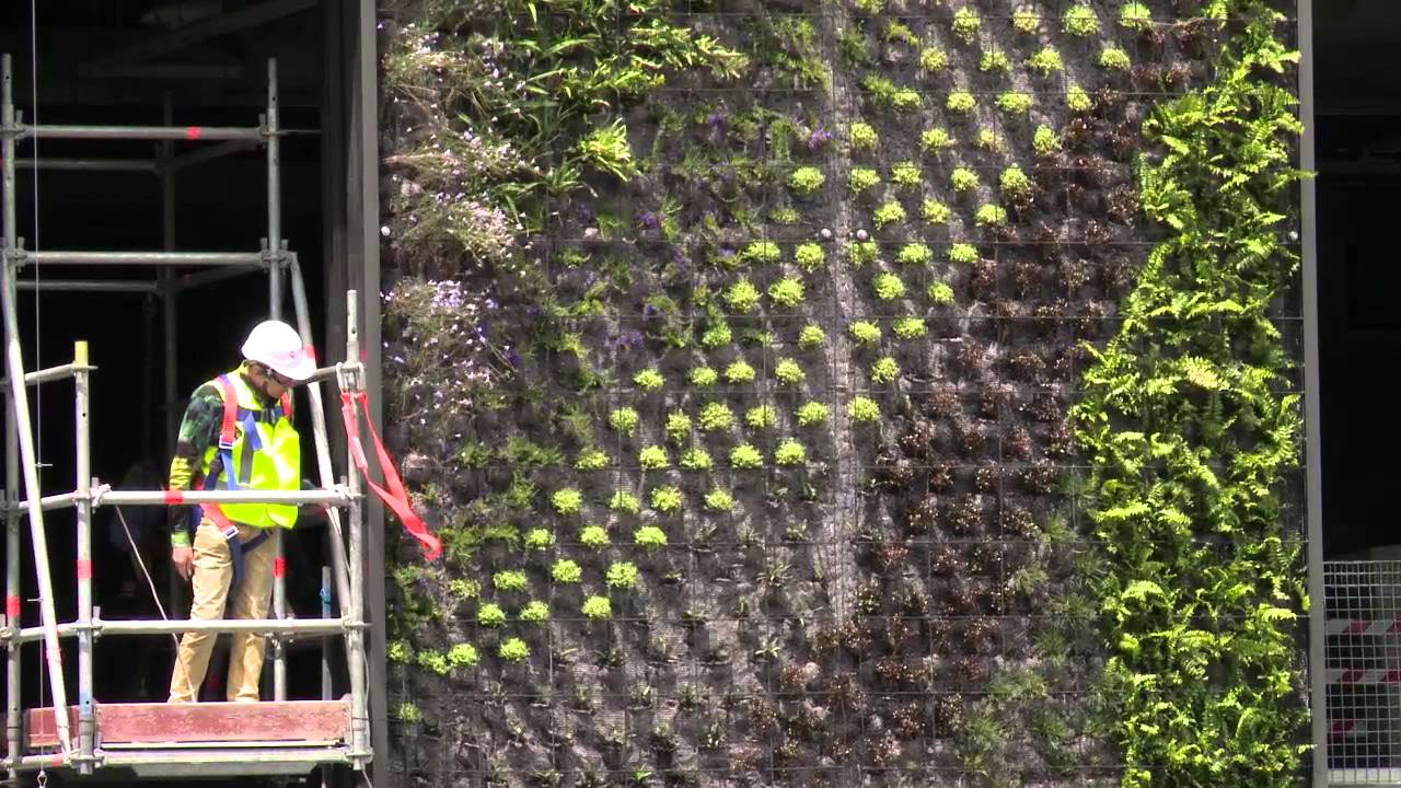 Patrick Blanc Talks About Vertical Gardens At One Central