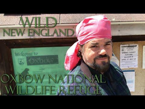 Wild New England: Oxbow National Wildlife Refuge
