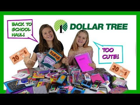 BACK TO SCHOOL DOLLAR TREE HAUL | $20 BACK TO SCHOOL HAUL || Taylor and Vanessa
