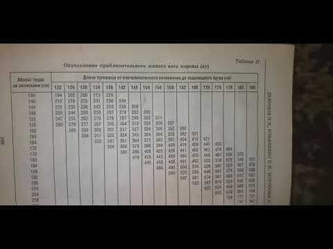 14 января. Обзор таблицы определения приблизительного веса молодняка КРС