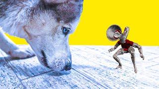 ВЕЛИКАЯ МАТЬ МЕГАФОН ПРЕВРАТИЛАСЬ В МАЛЯВКУ !! (Хаски Бандит) Говорящая собака