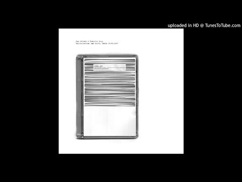 Jan Jelinek & Computer Soup - The New Anthem