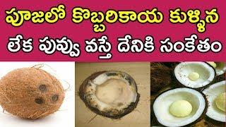 పూజలో కొబ్బరికాయ కుళ్ళిన లేక పువ్వు వస్తే దేనికి సంకేతం | Vasthu Tips About Coconut | Money Money