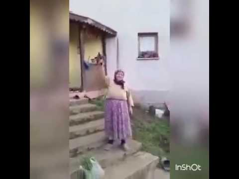 Kad babu pogodi pjesma