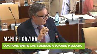 MANUEL GAVIRA vapulea al director de Canal Sur por permitir los insultos constantes contra VOX