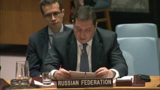 Выступление В.К.Сафронкова на заседании Совета Безопасности ООН по положению в Афганистане