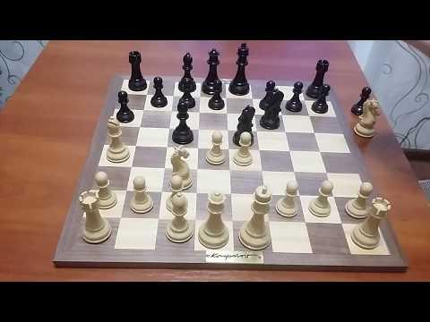 Шахматы. Испанская партия.