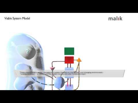 Viable System Model by Malik