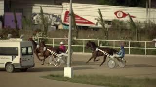Vidéo de la course PMU PREMI SOFIA