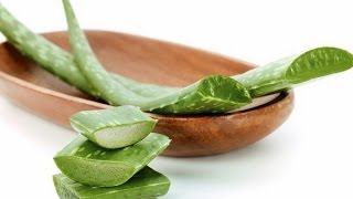 видео Алоэ от морщин - рецепты масок, использование сока для лица