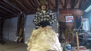 How to Tan a Deer Hide (Start to Finish)