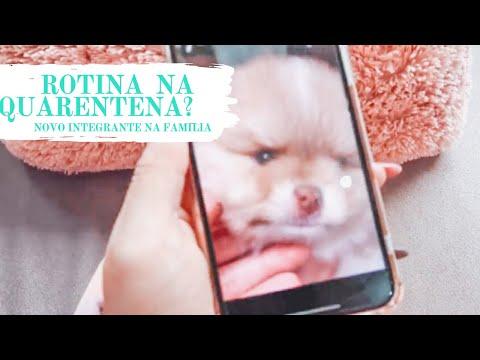 DAYLI VLOG - DIA 4 - NOVO INTEGRANTE NA FAMILIA | Tali Ramos