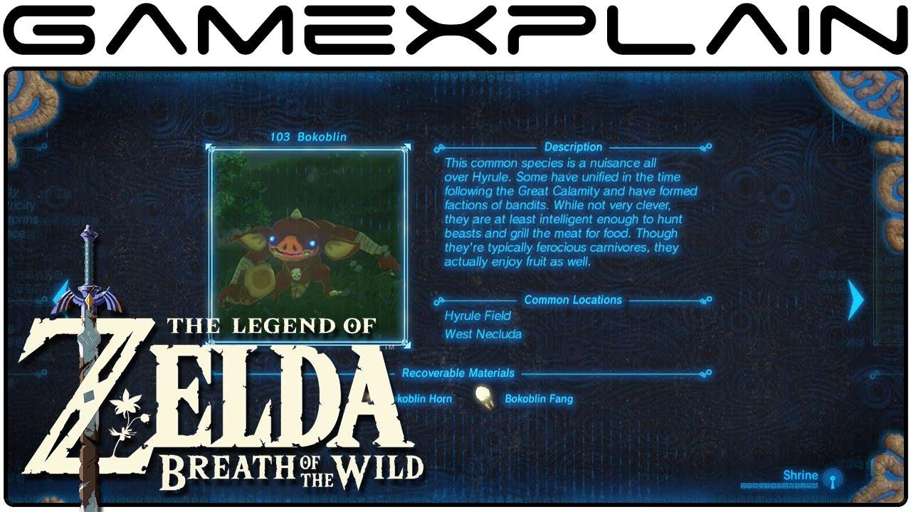 Zelda Breath Of The Wild 100 Complete Hyrule Compendium Youtube
