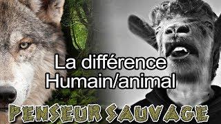 C'est quoi être Humain ? | La différence Homme/Animal - [Animaux CH.2 EP.07]