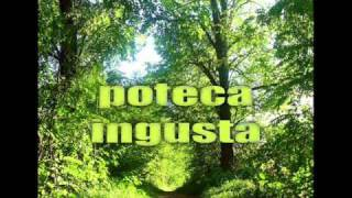 Relate4ever - Poteca Ingusta