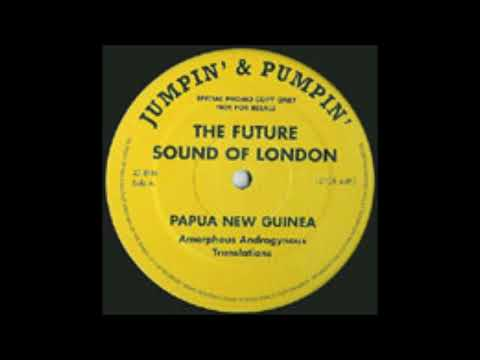 The Future Sound Of London ‎– Papua New Guinea (Amorphous Androgynous Translations)