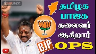OPS to join BJP and take over Tamilnadu BJP leader post? - 2DAYCINEMA.COM
