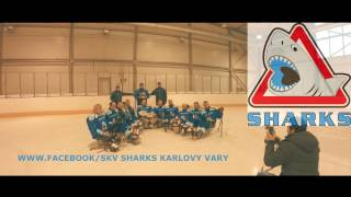 Sledge hockey SKV Sharks 2017