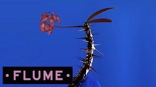 flume hyperreal feat kučka