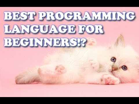 Best Programming Language?