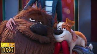 Тайная жизнь домашних животных (2016) - Возвращение домой (10/10)|Семейные Мультфильмы