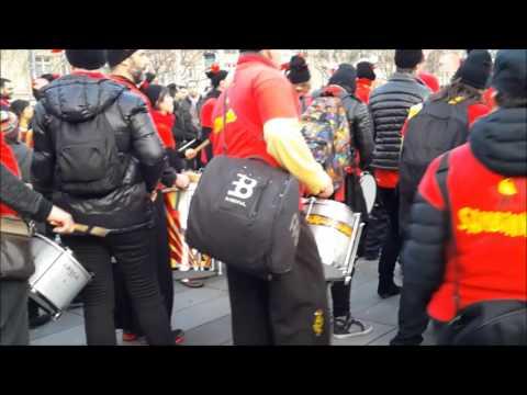 Carnaval 7 février 2016 à Paris