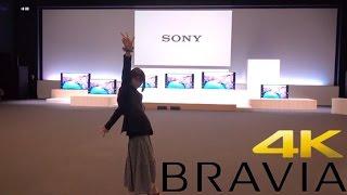 ソニー ブラビアカンファレンス! BRAVIA 4K Android TV機能 ハイレゾ ゲームなんでもあり! thumbnail