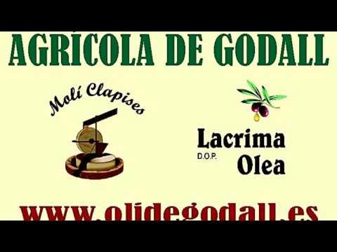 Godall, 20150314 12 Fira oli Godall