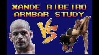 Video Xande Ribeiro Armbar Study ADCC 2017 download MP3, 3GP, MP4, WEBM, AVI, FLV Oktober 2018