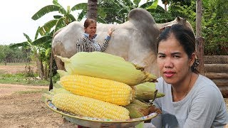 Awesome Cooking Sweet Corn Porridge Delicious Recipe -  Primitive Technology  - Village food factory