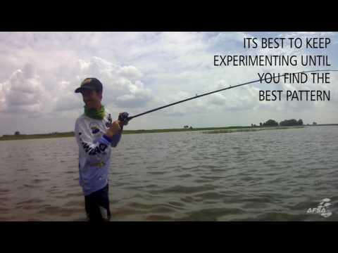 Catching Catfish On Popping Method
