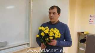 Курсы эстонского (тел. 5521112) закончены. Отзыв про учителя и школу Atlasnet:)