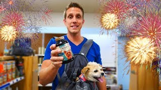 10 Tips To Calm Your Dog During Fireworks This July 4th 🐶💥