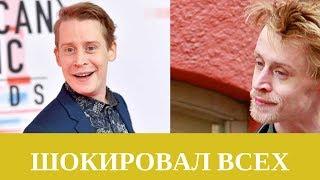 Вспоминаем великого актера Маколея Калкина
