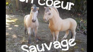[SERIE SCHLEICH]Un Coeur Sauvage~Episode 7