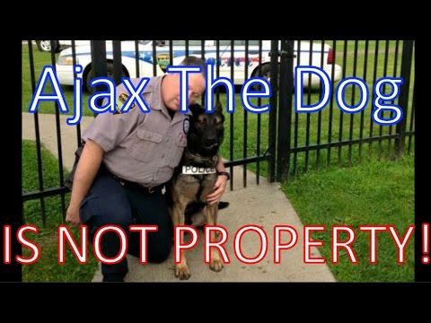 Ohio Officer Hickey Trying to Save K9 buddy Ajax from Being Auctioned by City