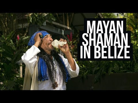Mayan Shaman's Guide to Medicinal Plants in Belize