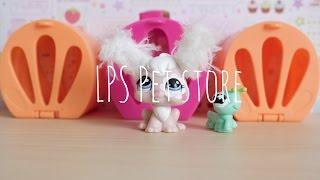 LPS Pet Store