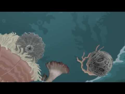 Ocean Acidification